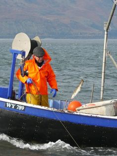 Long Lining At Whitby Sea Fishing, Fishing Boats, Sea Angling, Sea Otter, Otters, Gallery, Otter, Roof Rack