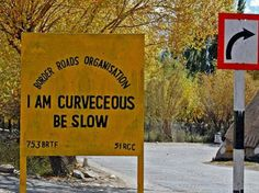 Leh road signs i am curvaceous, better be fast, or I may get away! Corny Pick Up Lines, Funny Road Signs, Signs Of Life, On The Road Again, Holiday Activities, Travel Alone, Street Signs, Sign I, Funny Pictures