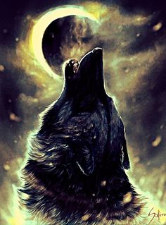 """astray-wolf-heart: """" By the light of the moon and my piercing howl I am further transformed into a cunning beast. From the circle of life to the evolution of man, I shall be reawakened as one with the. Beautiful Wolves, Animals Beautiful, Cute Animals, Anime Wolf, Wolf Spirit, Spirit Animal, Howl At The Moon, Wolf Quotes, Wolf Wallpaper"""