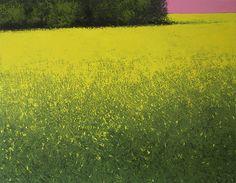 Colza au ciel rose, 2011 | Benoit Trimborn - Regards sur le Paysage