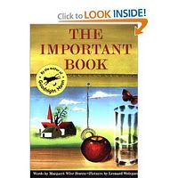 Using The Important Book for teaching main idea.Reflections From Within: The Important Book Teaching Main Idea, Teaching Writing, Writing Activities, Writing A Book, Writing Ideas, Teaching Ideas, Writing Traits, 6 Traits, Student Teaching