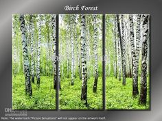 birch tree images spring - Google Search