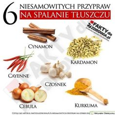 PRODUKTY SPALAJĄCE TŁUSZCZ Slow Food, Clean Eating, Food And Drink, Health Fitness, Healthy Recipes, Healthy Food, Favorite Recipes, Breakfast, Wellness