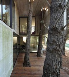 terrace of Modern Concrete House in The Midst of Trees