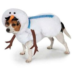 Have your distinguished gentleman warm and sharing the spirit in the Casual Canine Mustache Snowman Dog Costume! Fuzzy, silly snowman sports a colorful polka dot necktie Playful bendable tree-bran Snowman Costume, Dog Halloween Costumes, Pet Costumes, Halloween Ideas, Costume Ideas, Dog Christmas Clothes, Christmas Puppy, Christmas Items, Pets