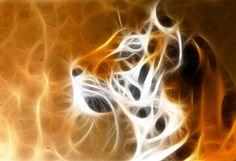 Tiger_Fractal_by_kodo34.jpg