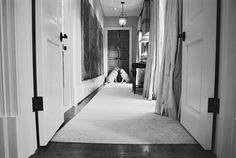 This was such a sweet post..the bride was getting ready and the dogs were outside the door waiting