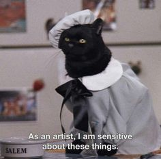 Sabrina the teenage witch Cat Memes, Funny Memes, Hilarious, Salem Sabrina, Sabrina Cat, Salem Cat, Salem Saberhagen, Tv Spielfilm, Cute Couples Teenagers