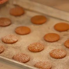 Perfect gingerbread recipe for when you want to build a house or make gingerbread people.
