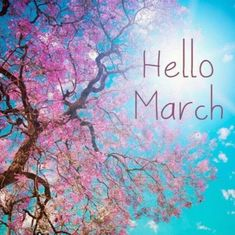 Hello March Images and Pictures Hello March Wallpaper Hello March Images, Hello March Quotes, March Month, New Month, March Baby, February, Days And Months, Months In A Year, Spring Months