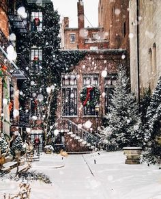 Imagem de snow, christmas, and winter