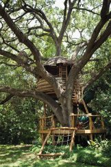 Treehouse Masters' Pete Nelson: 5 Things Every Beginning Builder Must Know – Parade Treehouse Masters, Building A Treehouse, Treehouse Ideas, Tree House Plans, Cool Tree Houses, Tree House Designs, Backyard Play, Tree Tops, In The Tree