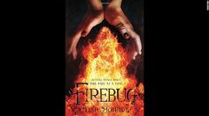 """In a world of vampires, """"werefoxes"""" and """"dryads,"""" Ava is a firebug who can set fires with her mind. She's also an indentured assassin, but things change when she refuses to do her job. Author Lish McBride's heroine presents """"a refreshing change from the endless parade of naive heroines found elsewhere,"""" according to Kirkus Reviews."""