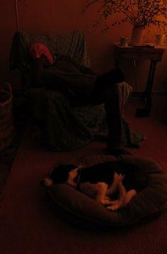 At least the women of the farm are still working! #FarmGirlPower #SleepingFarmer #farmpics ... from @LowerDairyFarm