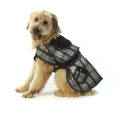 Sherlock Plaid Dog Coat  Gray * Check out the image by visiting the link.