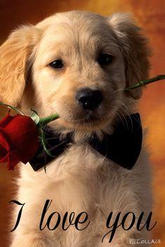 I love you too!!!!