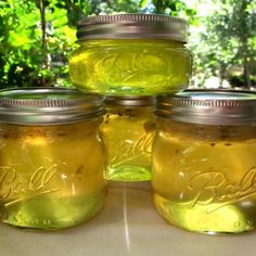 Jalapeno Mint Jelly Recipe my mom loves this stuff! Maybe minus the mint :)