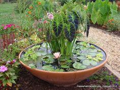 Ideia para um mini-lago no jardim... adorável!