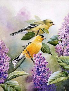 Birds in the Lilac Garden by Susan Bourdet