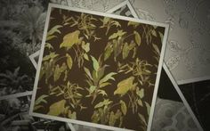 Bamboo Forest - Jim Thompson Fabrics - Fall 2012 Collection