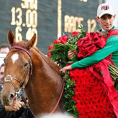 2011 Derby winner 'Animal Kingdom' Jockey John Velasquez Trainer G. Derby Time, Derby Day, Race Horse Breeds, Race Horses, Horse Racing, Kentucky Derby Tickets, Derby Horse, Derby Winners, Run For The Roses