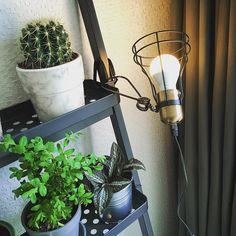 #kwantum repin: Klemlamp Kuma > https://www.kwantum.nl/verlichting/wandlampen/verlichting-wandlampen-klemlamp-kuma-1561046 @studionoz - Indoor gardening #interieur #planten #draadlamp #kwantum #ikea #vescom