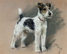 Fox Terriers, Wirehaired Fox Terrier, Wire Fox Terrier, Dog Artwork, Vintage Dog, Pastel Art, Beautiful Drawings, Pet Portraits, Portrait Art