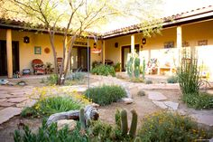 This vintage ranch bed and breakfast is nestled at the base of the Tucson Mountains on more than 13 acres of desert. The Cat Mountain Lodge is warm and inviting andsurrounded by endless wildlife viewing areas, hiking trails and all the attractions of Tucson. But the real perk for cat lovers is the chance to see mountain lions and bobcats roaming around in their natural habitat. It's not uncommon to see them in the area, especially while hiking and exploring the mountains.