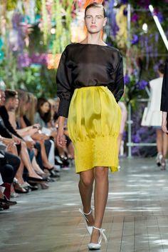 Christian Dior Spring 2014 Ready-to-Wear Fashion Show - Ieva Palionyte (NEXT)