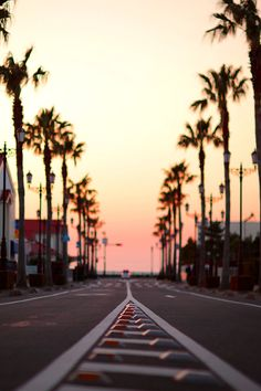 Follow the road that leads to your hopes & dreams #palmtrees #sunset #beach