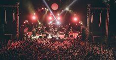 3ο Φεστιβάλ Δάσους, 2017 Concert, Concerts