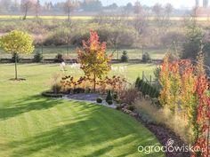 Po mojemu. Ogród subiektywnie świadomy. - strona 28 - Forum ogrodnicze - Ogrodowisko