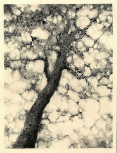 Printmaking: monoprint
