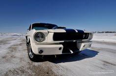 Shelby Mustang GT 350 (1966) - klassisch amerikanische Lackierung Fotos zu the american way of driving: https://www.zwischengas.com/de/bildermagie/usa?utm_content=buffer5e12f&utm_medium=social&utm_source=pinterest.com&utm_campaign=buffer Foto © David Newhardt - Courtesy of Mecum Auctions