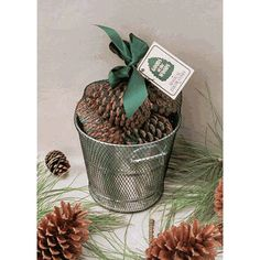 1 Pound of Goods of the Woods Color Cones in a Galvanized Bucket - For Wood Fireplaces, Firepits, Chimeneas, and Campfires