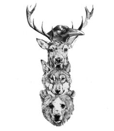 The Totem of the Wild. Raven: Knowledge & Wisdom; Stag: Pride & Honor; Wolf: Courage & Loyalty; Bear: Strength & Solitude
