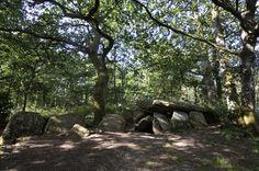 #elven #bretagne #morbihan #promenadebretonne #dolmen #sousbois #ombres