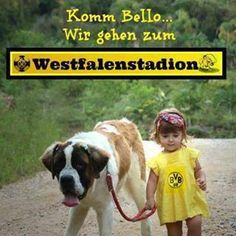 BVB 09 Borussia Dortmund jetzt gehst gleich los