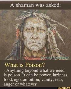 American Indian Quotes, Native American Wisdom, What Is Poison, Wisdom Quotes, Me Quotes, Daily Quotes, Qoutes, Great Quotes, Inspirational Quotes