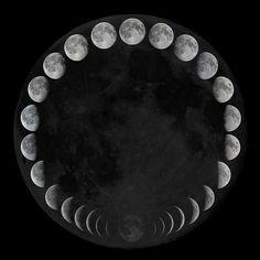 ^^  Moondaughter.com: Moon Days: Luna 101