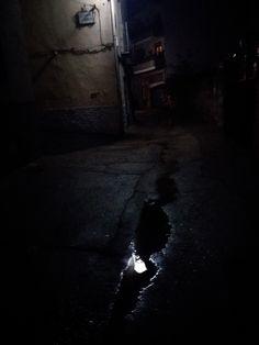 Reflejos de agua de lluvia... (1)