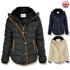 fe239222b Premium Coat With Brown Trim With Concealed Hood  Perfect For The Upcoming  Autumn   Winter.