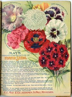 Customers Browsing Through The Black And White Pages Of 1900 L May Catalog Would Have