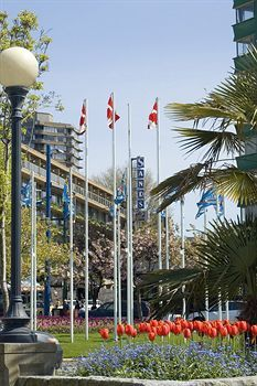 Downtown Vancouver, BC Hotels – Best Western Plus Sands Vancouver Hotels, Downtown Vancouver, Columbia, Westerns, Sands Hotel, Stanley Park, Best Western, World's Biggest, Great Photos