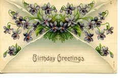 Small Violets-Flowers-Pretty Floral Birthday Greetings 1908 Vintage Postcard