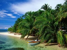 Isla Coiba National Park: Beyond ranking as Panama's number-one diving site, Isla Coiba National Park boasts fine beaches backed by dense jungle.
