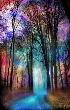 Minha natureza colorida!