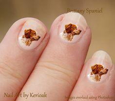 "Brittany Spaniel Nail Art, Para las ""mamás"" orgullosas!"