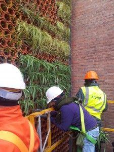Alijardin, jardin vertical sustentable mod. Eco.Bin, en Barcelona