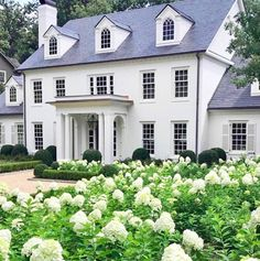 la maison Exterior Inspiration - The Father Of The Bride House - Lauren Nelson Colonial House Exteriors, Colonial Exterior, Design Exterior, Exterior Colors, Classic House Exterior, Exterior Shutters, Ranch Exterior, Colonial House Plans, Black Shutters
